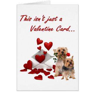 Terrier soyeux rose et coeurs Valentine Carte De Vœux