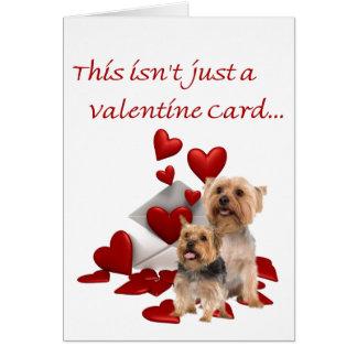 Terrier soyeux soit notre Valentine Carte De Vœux