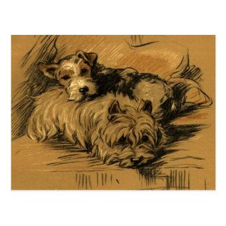Terrier vintage et Westie Carte Postale