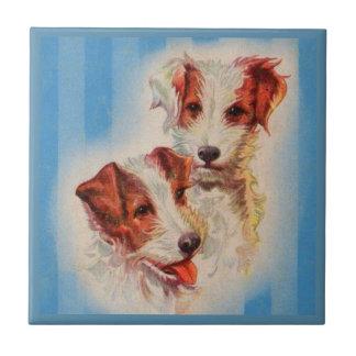 Terriers MIGNONS de Jack Russell Petit Carreau Carré