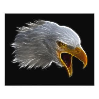 Tête américaine criarde d'Eagle chauve Prospectus 11,4 Cm X 14,2 Cm
