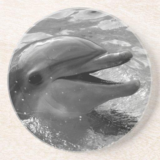 Tête de dauphin en noir et blanc ouvert de bouche  dessous de verres