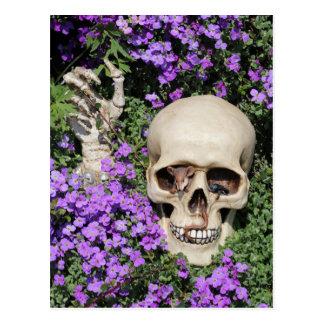 Tête de mort - Gothic/carte postale Carte Postale