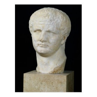 Tête de Titus Carte Postale