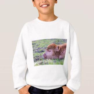 Tête de veau écossais nouveau-né brun de sweatshirt