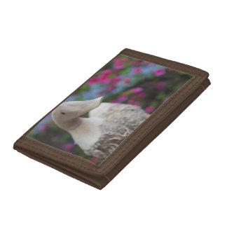 Tête en bois de canard avec des fleurs