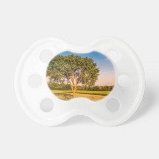 Tétine de bébé, photo d'un arbre dans un champs.