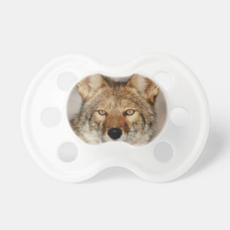 Tétine de coyote fin