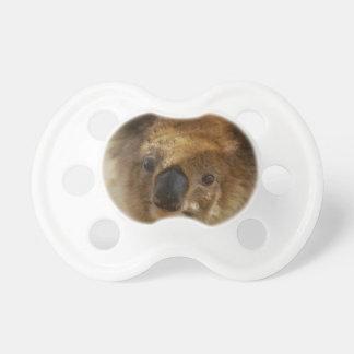 Tétine Koala