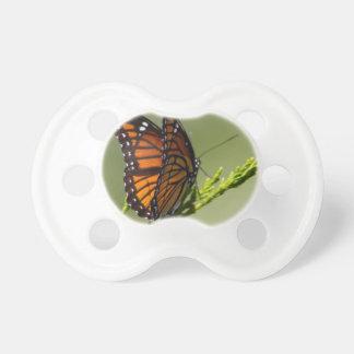 Tétine Papillon de monarque magnifique sur l'arrière -
