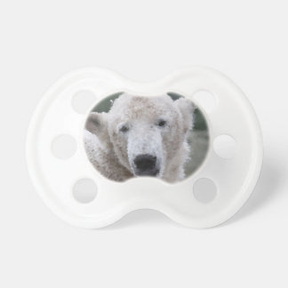 Tétine Poly animaux - ours blanc