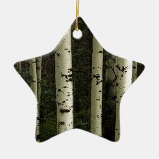Texture d'un portrait de forêt ornement étoile en céramique