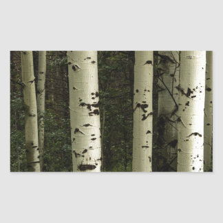 Texture d'un portrait de forêt sticker rectangulaire