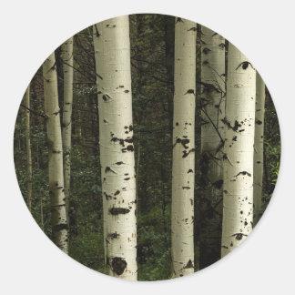 Texture d'un portrait de forêt sticker rond