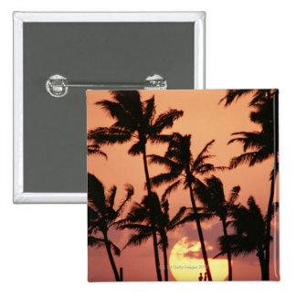 The Sun et palmier Pin's