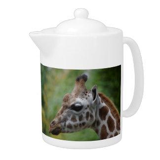 Théière de girafe