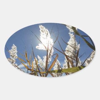 Thème de lumière du soleil d'éblouissement sticker ovale