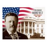 Theodore Roosevelt - 26ème président des États-Uni Cartes Postales