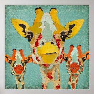 Three Peeking Giraffes Art Poster