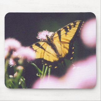 TigerSwallowtail Tapis De Souris