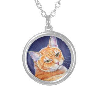 Tigg le chat tigré orange collier