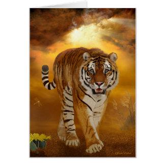 Tigre - après la tempête - carte de voeux