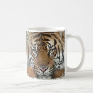 Tigre au zoo national mug blanc