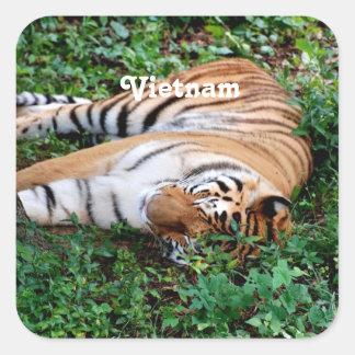 Tigre Sticker Carré