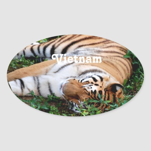 Tigre Stickers Ovales