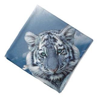 Tigre blanc bleu bandanas