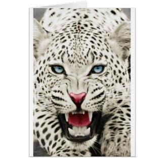 tigre blanc cartes