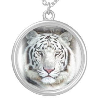 Tigre blanc collier