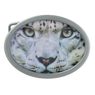 Tigre blanc magnifique boucle de ceinture ovale
