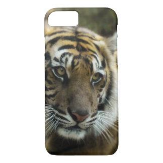 Tigre Coque iPhone 7