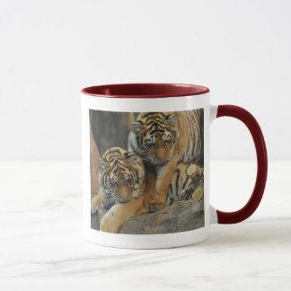Tigre CUB d'Amur Tasse
