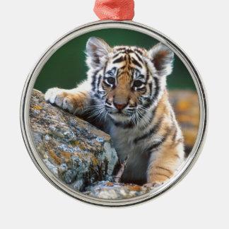 Tigre CUB de bébé Ornement Rond Argenté