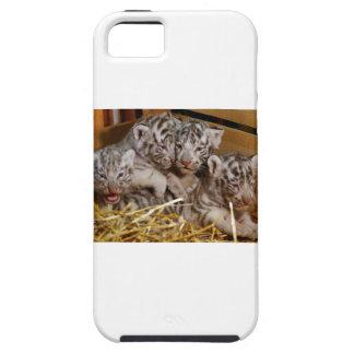 Tigre CUB de Bengale Coque iPhone 5
