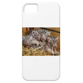 Tigre CUB de Bengale Coque iPhone 5 Case-Mate