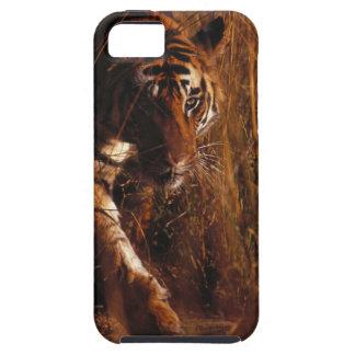 Tigre de Bengale Coques iPhone 5 Case-Mate