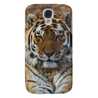 Tigre de Bengale, Panthera zoo du Tigre, Louisvill Coque Galaxy S4