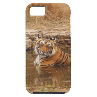 Tigre de Bengale royal dans l'étang de jungle, 2 Coque Case-Mate iPhone 5