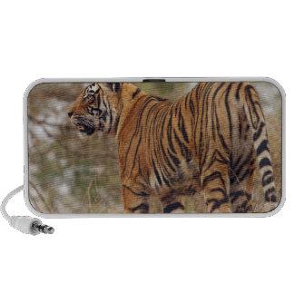Tigre de Bengale royal dessus vers le haut, Rantha Haut-parleur Notebook