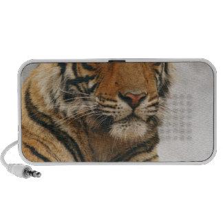 Tigre de Bengale royal sur la roche, Ranthambhor Haut-parleur iPod