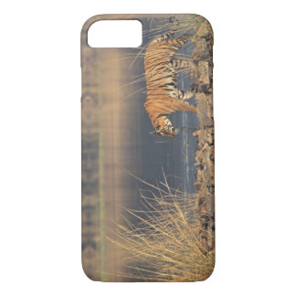 Tigre de Bengale royal sur le mouvement, Coque iPhone 7