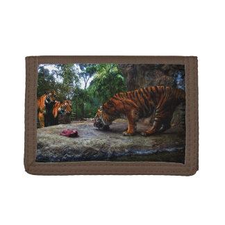 Tigre de Bengale taquinant les enfants,