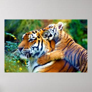 Tigre de mère avec l'escalade de CUB de bébé et l' Poster