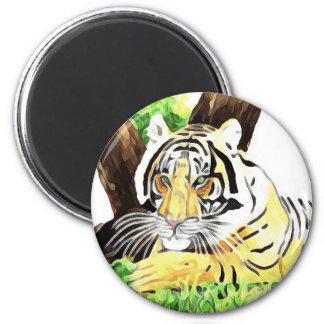 Tigre de safari aimant
