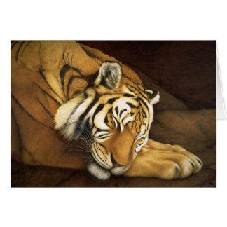 tigre de sommeil cartes