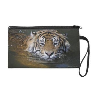 Tigre de Sumatran, sumatrae du Tigre de Panthera Sacs À Main Avec Dragonne