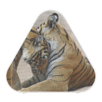 Tigre et jeunes de Bengale royaux ceux - touchant